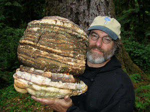 Paul Stamets with Giant Fungi