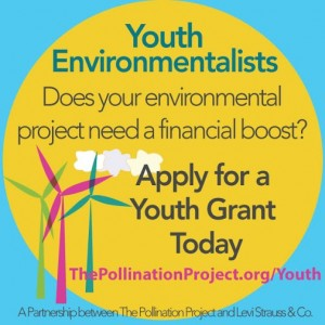 The Pollination Project - Youth Grants Flyer