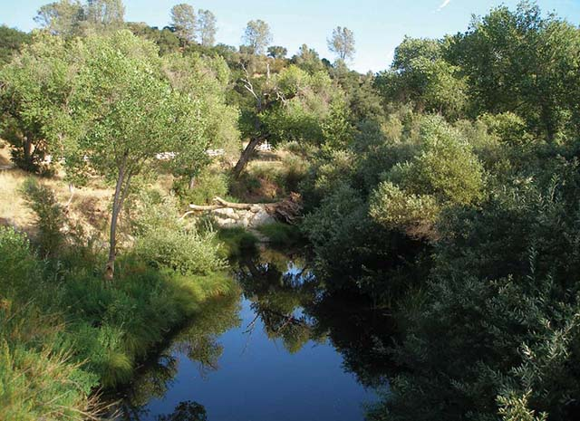 Salinas River in San Luis Obispo County