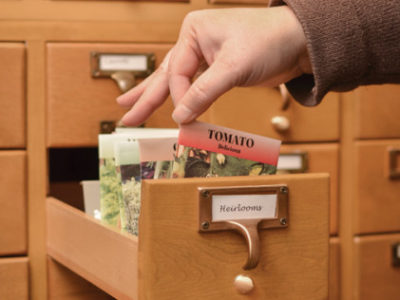 Card Catalog with Seed Packets