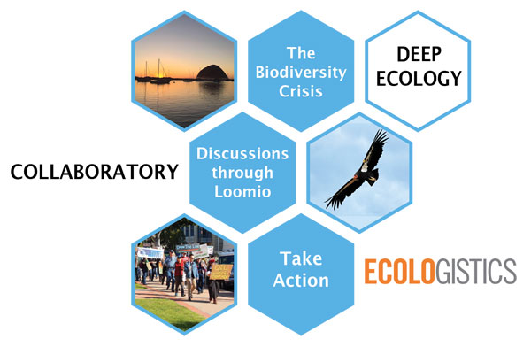 Ecologistics Deep Ecology Collaboratory Logo