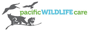 Pacific_Wildlife_Care_logo_small